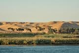 Desert; Jebel Silsil, Palm, Edge of Nil Photographic Print by P. Eoche