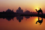 Taj Mahal & Silhouetted Camel & Reflection in Yamuna River at Sunset. Fotografisk tryk af Richard I'Anson