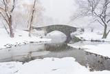 Usa, New York, New York City, Central Park, Gapstow Bridge in Winter Impressão fotográfica por Tetra Images