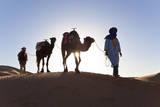 Tuareg Man with Camel Train, Sahara Desert, Morocc Fotografie-Druck von Peter Adams