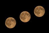 Full Moon Moving above Night Sky Fotoprint av Olaf Broders