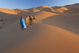 Tuareg Camel Train, Sahara Desert, Morocco Fotografisk tryk af Peter Adams