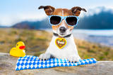 Oktoberfest Dog Valokuvavedos tekijänä Javier Brosch