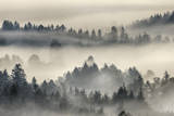 Morning Mist above Kochelmoor. Photographic Print by Martin Ruegner