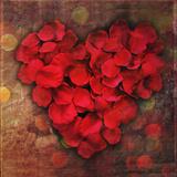 Rose Petals Forming Heart Shape Symbol Photographic Print by Julia Davila-Lampe
