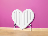 Heart Shaped Radiator Photographic Print by Peter Dazeley