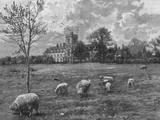 Cirencester Impressão fotográfica por Hulton Archive