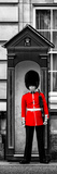 Buckingham Palace Guard - London - UK - England - United Kingdom - Europe - Door Poster Reproduction photographique par Philippe Hugonnard