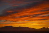Sunset Fotografisk tryk