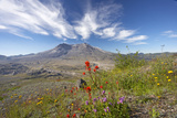 Mount St Helens Volcano with Flowers in Foreground Impressão fotográfica