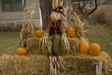 Figure and Pumpkins, Set Up to Commemorate Hallowe'en Photographic Print