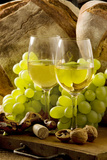 Wine Glasses with White Wine and Grapes Bedruckte aufgespannte Leinwand