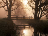 Romantic Bridge Spanning Brook in Morning Mist Lámina fotográfica