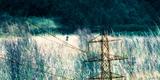 Conceptual Image of Electricity Pylon Photographic Print by Clive Nolan
