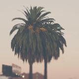 Los Angeles Fotografie-Druck von Laura Evans