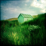 Small Shed in Sandunes Photographic Print by Craig Roberts