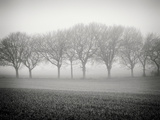 Foggy Landscape Fotografisk tryk af Craig Roberts