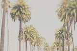 Californien Premium fototryk af Laura Evans