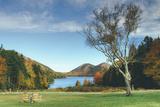 Jordan Pond in Autumn, Acadia National Park Fotografie-Druck von Vincent James