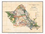 Oahu, Hawaiian Islands, Hawaii Territory Survey Map Plakater av John M. Donn