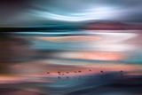 Migrations - Blue Sky Fotoprint van Ursula Abresch