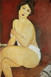 Large Seated Nude by Amedeo Modigliani Photographic Print