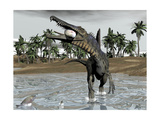 Spinosaurus Dinosaur Walking in Water and Feeding on Fish Poster