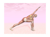 Female Musculature Performing Revolved Side Angle Yoga Pose Posters