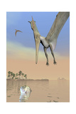 Pteranodon Fishing for Food Stampe