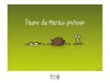 Rats d'marais - Faune poitevine Affiche par Sylvain Bichicchi