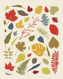 Caduta di foglie|Falling Leaves Stampa giclée di Clara Wells