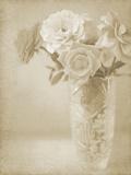 Soft Roses I Giclee Print by Shana Rae
