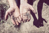 Working Hands Photographic Print by  soupstock