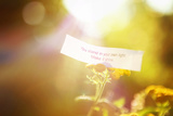 Fortune Message, You Stand in Your Own Light. Make it Shine. Instagram Effect Photographic Print by  soupstock
