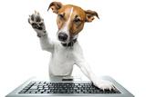 Dog Computer Reproduction photographique par Javier Brosch
