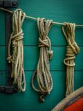 Wagon Ropes Reproduction photographique par Mr Doomits