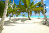 Beautiful Caribbean Beach in Dominican Republic Photographic Print by  haveseen