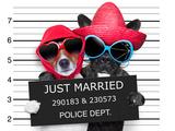 Just Married Mugshot Valokuvavedos tekijänä Javier Brosch