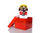 Christmas Box Dog Valokuvavedos tekijänä Javier Brosch