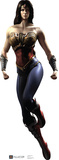 Wonder Woman - Injustice DC Comics Game Lifesize Standup Cardboard Cutouts