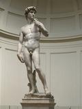 David by Michelangelo Fotografisk trykk
