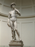 David by Michelangelo Photographic Print