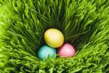 Three Easter Eggs in Grass Fotografisk trykk