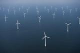 Wind Farm in Ocean Reproduction photographique par Cameron Davidson