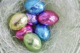 Easter Egg Candies in Nest Fotografisk trykk