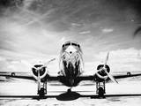 Passenger Airplane on Runway Fotografie-Druck von Philip Gendreau