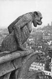 Notre Dame Cathedral Gargoyle Paris Photographic Print