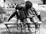 Chimpanzees Embracing Lámina fotográfica