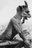 Gargoyle on Notre Dame Cathedral Photographic Print