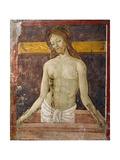 Pieta Giclee Print by Antoniazzo Romano